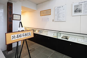 gallery_5